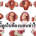 9 เดือนนี้ ลูกในท้องนอนท่าไหน ตัวโตอย่างไรบ้าง