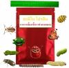 อะมิโน โปรตีน สารอาหารเลี้ยงเชื้อรากำจัดและทำลายแมลงศัตรูพืช