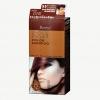 เบอริน่า อีสซี่ คัลเลอร์ แชมพู S5 สีน้ำตาลเข้มมะฮอกกานี Dark Mahogany Brown / Berina Issy color shampoo (แชมพูเปลี่ยนสีผม ปิดผมขาว ไร้แอมโมเนีย) สำเนา