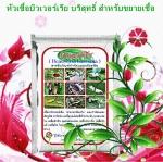 หัวเชื้อรา บิวเวอร์เรีย บริสุทธิ์ สำหรับขยายเชื้อกำจัดแมลง