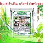 หัวเชื้อรา เมธาไรเซียม บริสุทธิ์ สำหรับขยายเชื้อ กำจัดแมลง