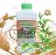 เชื้อราพาซิโลมัยซิส ชนิดน้ำ กำจัดแมลงศัตรูพืช thumbnail 2