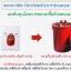 หัวเชื้อรา บิวเวอร์เรีย บริสุทธิ์ สำหรับขยายเชื้อกำจัดแมลง thumbnail 4