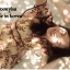 Dress แขนระบายคอV เนื้อผ้าซีทรูปักดอก thumbnail 3