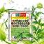 4สหาย จุลินทรีย์กำจัดโรคพืชทุกชนิด thumbnail 2