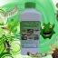 เชื้อราเมธาไรเซียม ชนิดน้ำ กำจัดแมลงศัตรูพืช thumbnail 1