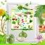 เขียว คีเลต สารอาหารรวมฉีดพ่นทางใบ thumbnail 2