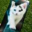 TPU ลายเส้นนูนคนรักสัตว์ Oppo A37 thumbnail 7