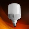 หลอดไฟ LED High Watt Bulb