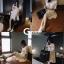 เดรสเกาหลี พร้อมส่ง ชุดเดรส ผ้าพริ้วๆเนื้อนุ่ม thumbnail 8