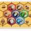 ของเล่นไม้ เกมคีบผึ้ง thumbnail 3